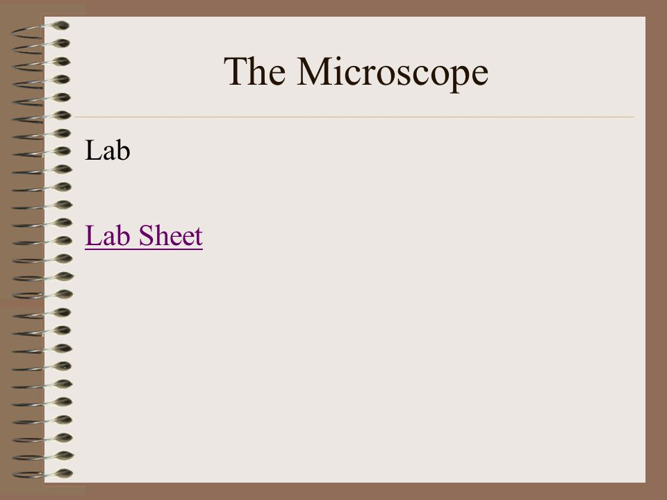 The Microscope Lab Lab Sheet