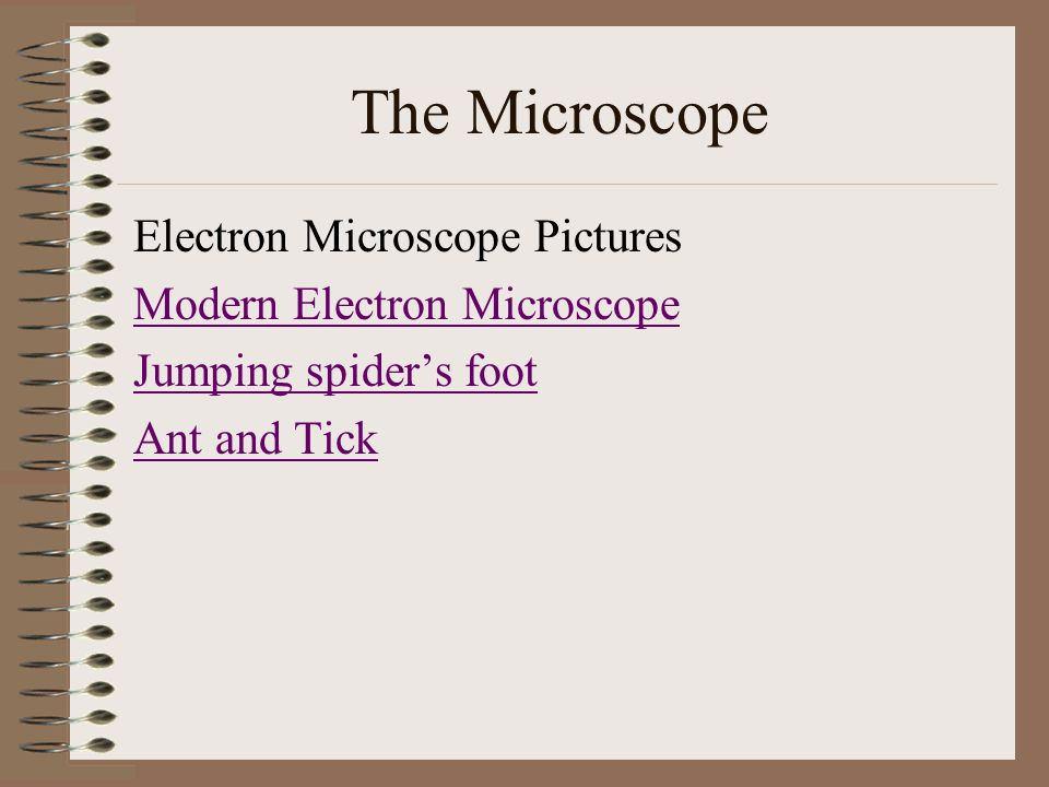 The Microscope Electron Microscope Pictures Modern Electron Microscope