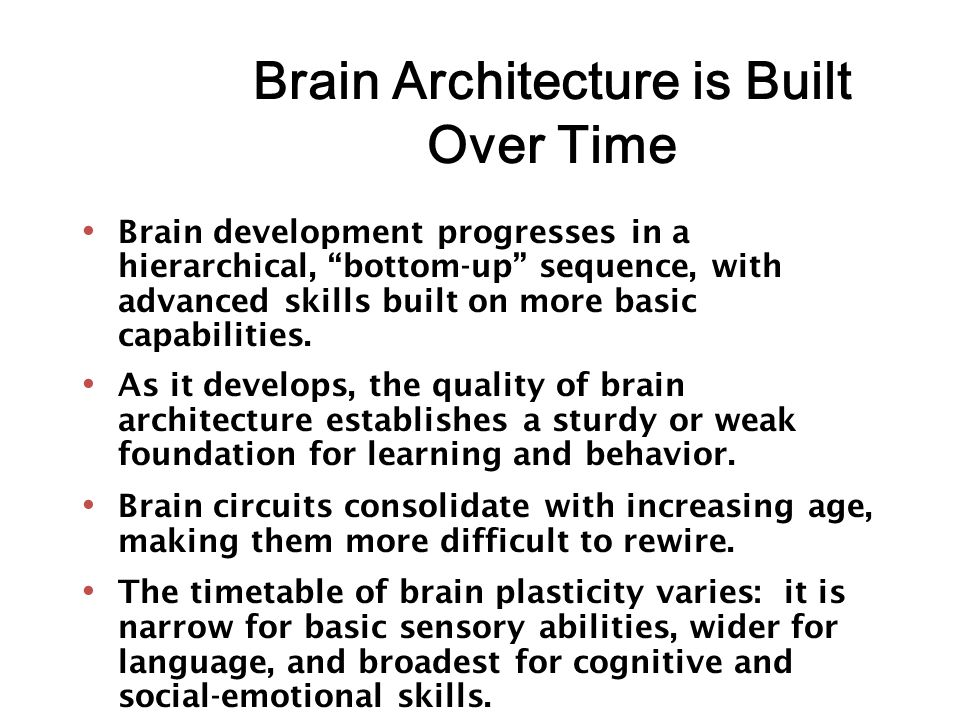 Brain Architecture is Built Over Time