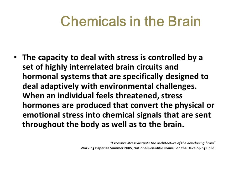 Chemicals in the Brain
