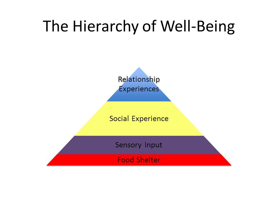 The Hierarchy of Well-Being