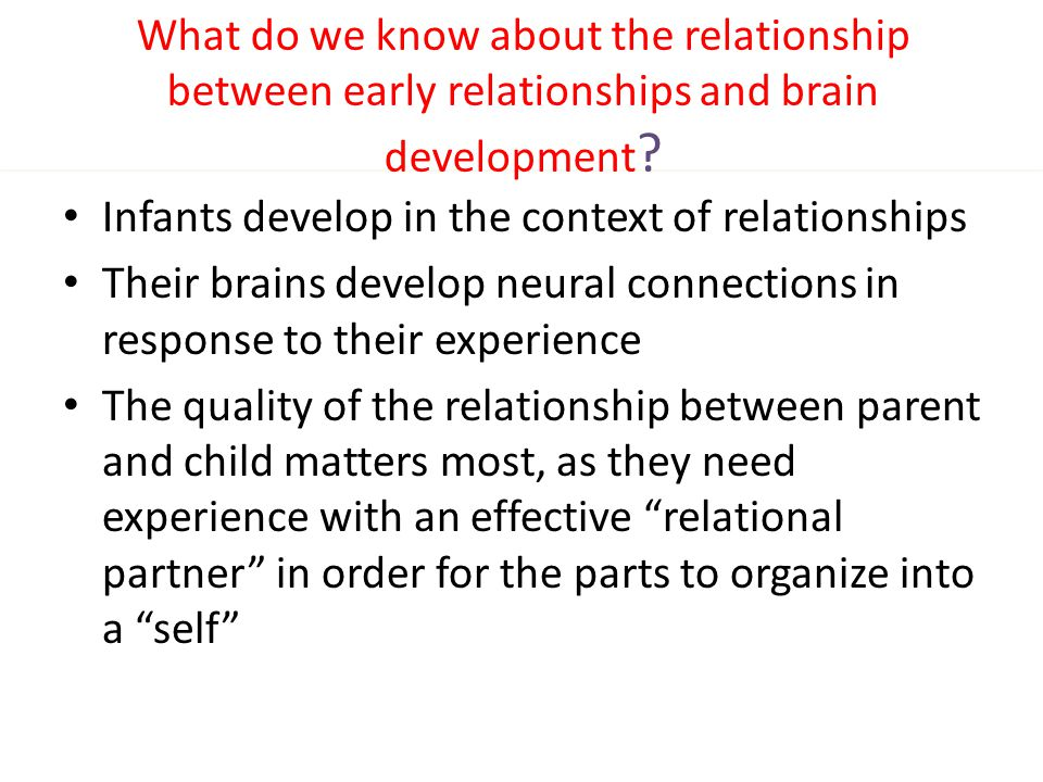 What do we know about the relationship between early relationships and brain development