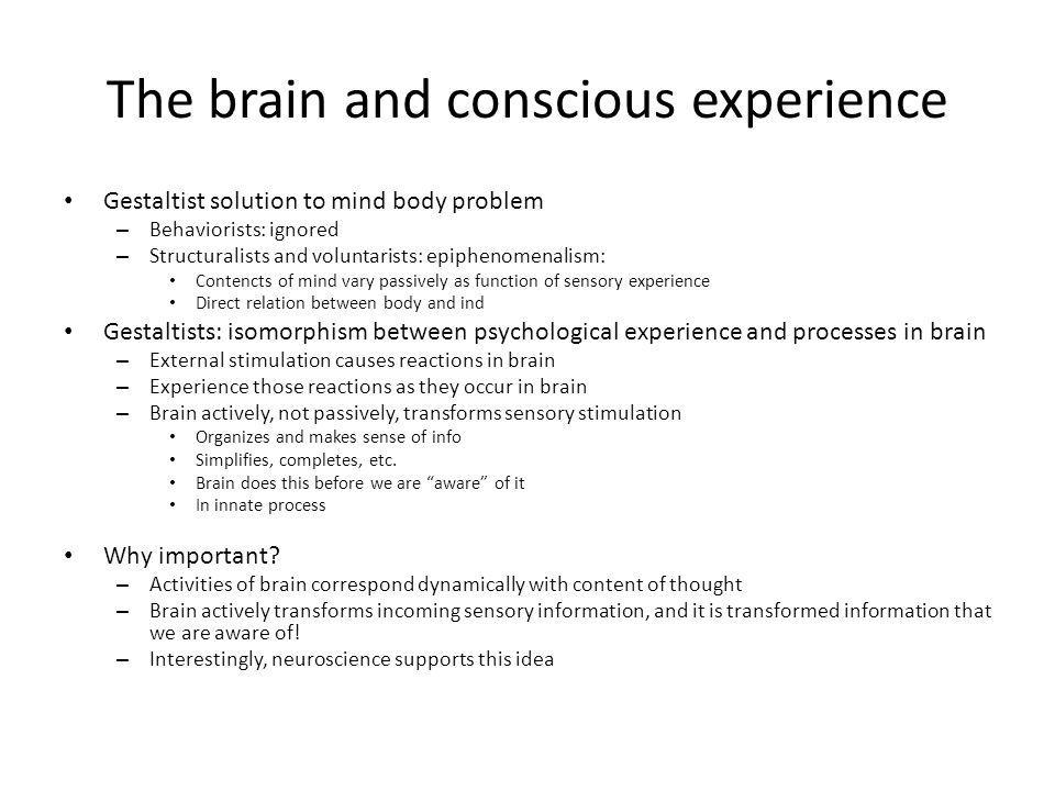 The brain and conscious experience