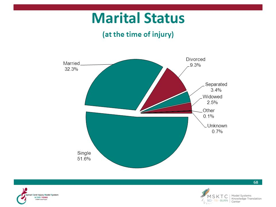 Marital Status (at the time of injury)