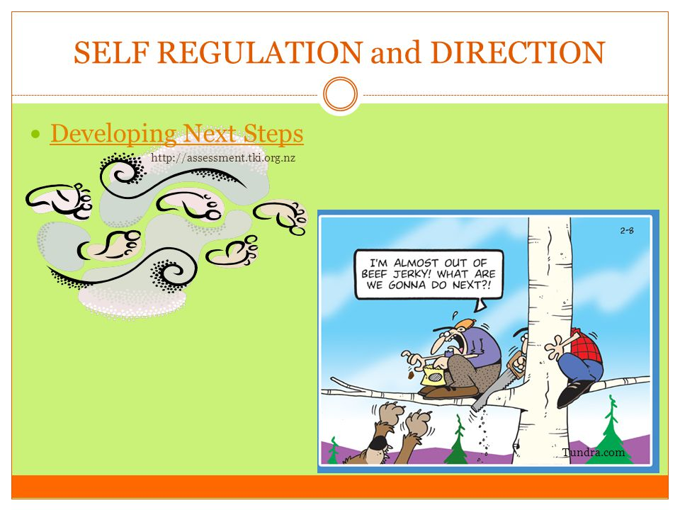 SELF REGULATION and DIRECTION