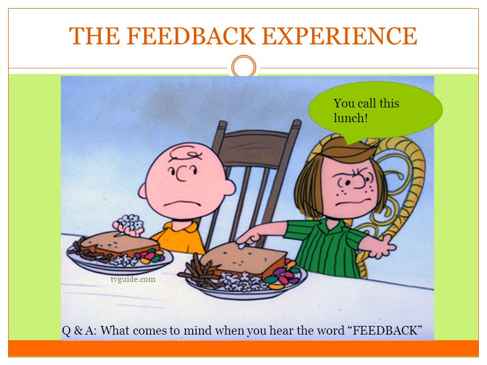 THE FEEDBACK EXPERIENCE