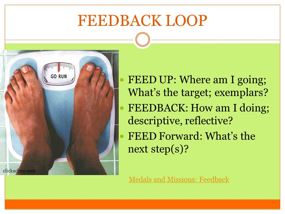 FEEDBACK LOOP FEED UP: Where am I going; What's the target; exemplars