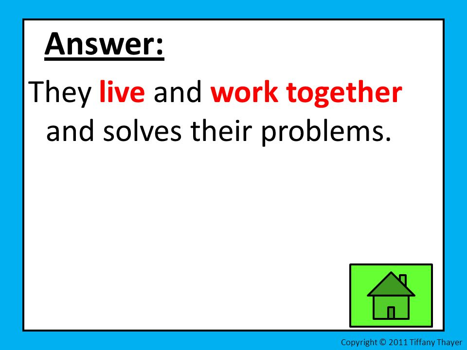 Answer: They live and work together and solves their problems.