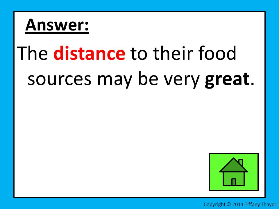 The distance to their food sources may be very great.
