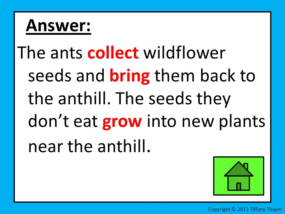 Answer: The ants collect wildflower seeds and bring them back to the anthill. The seeds they don't eat grow into new plants near the anthill.