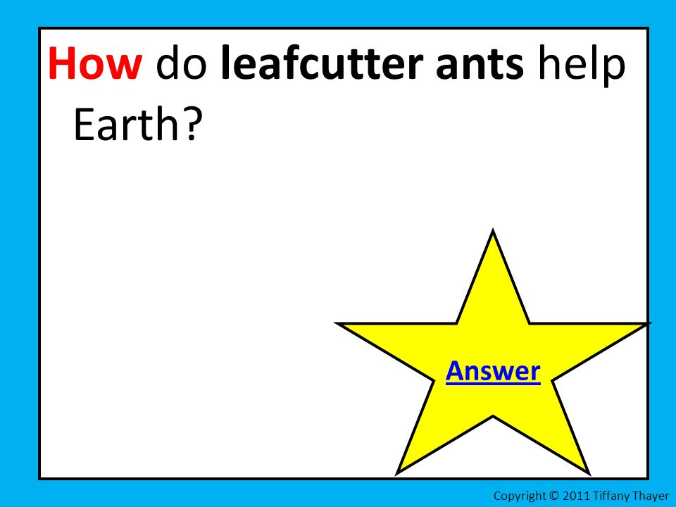 How do leafcutter ants help Earth