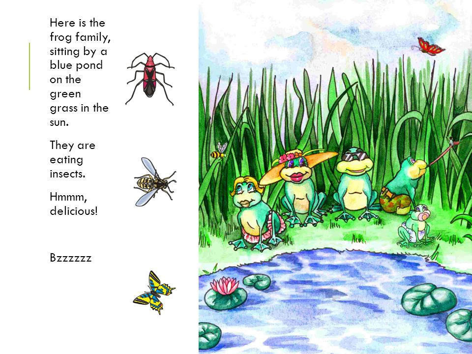 Here is the frog family, sitting by a blue pond on the green grass in the sun.