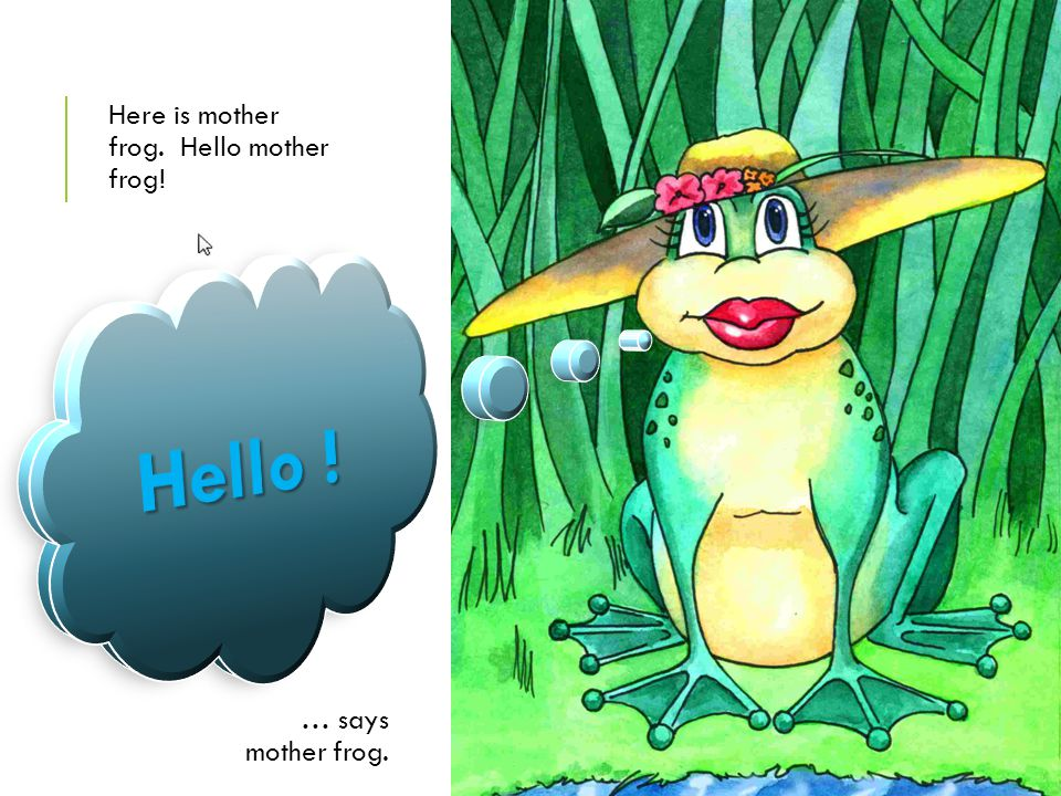 Here is mother frog. Hello mother frog!