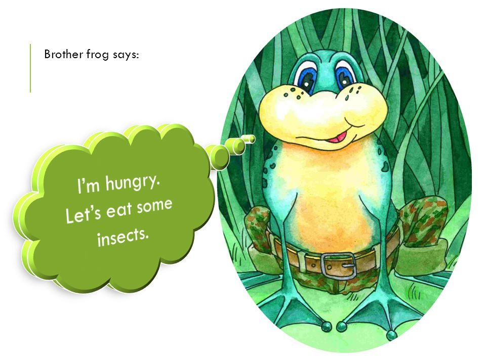 Brother frog says: I'm hungry. Let's eat some insects.