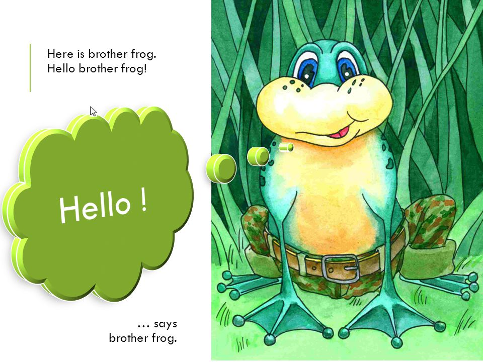 Here is brother frog. Hello brother frog!