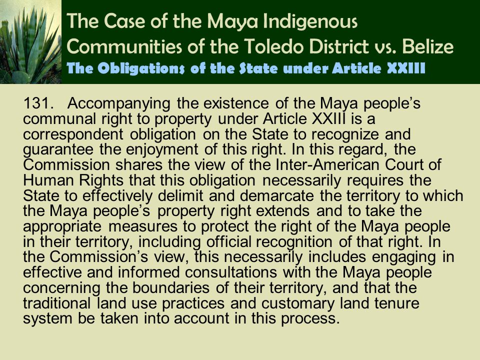The Case of the Maya Indigenous Communities of the Toledo District vs