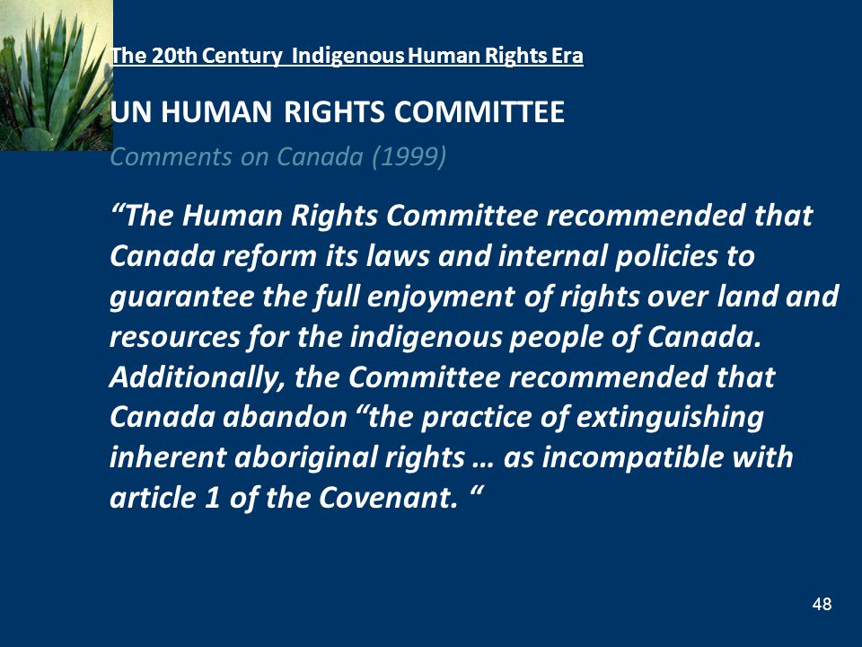 UN HUMAN RIGHTS COMMITTEE