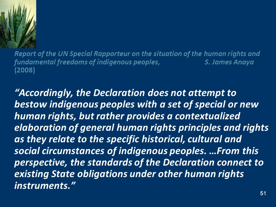 Report of the UN Special Rapporteur on the situation of the human rights and fundamental freedoms of indigenous peoples, S. James Anaya (2008)