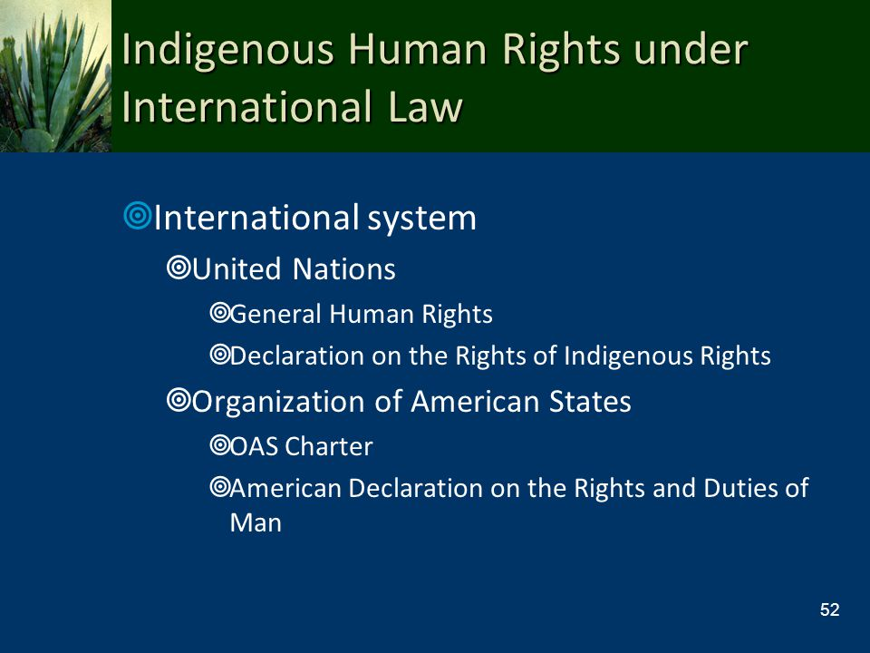 Indigenous Human Rights under International Law