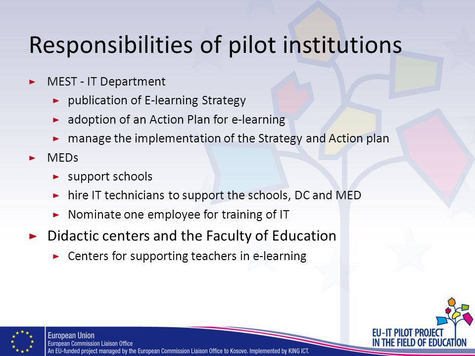 Responsibilities of pilot institutions