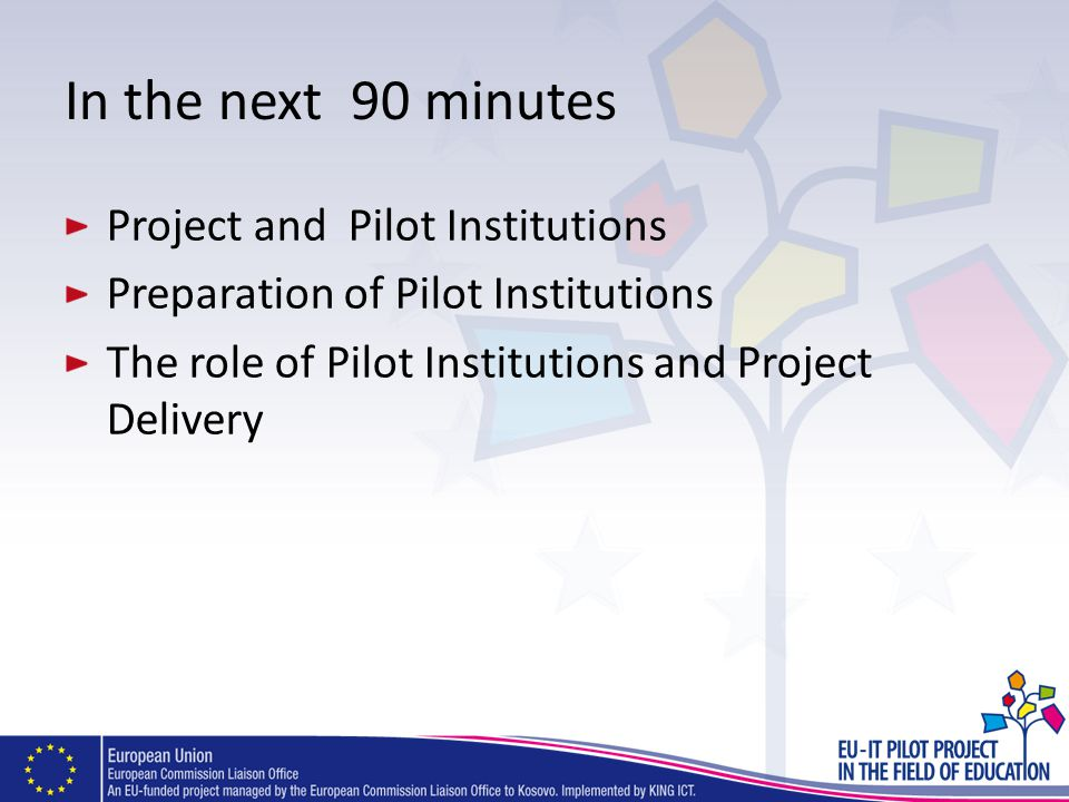 In the next 90 minutes Project and Pilot Institutions