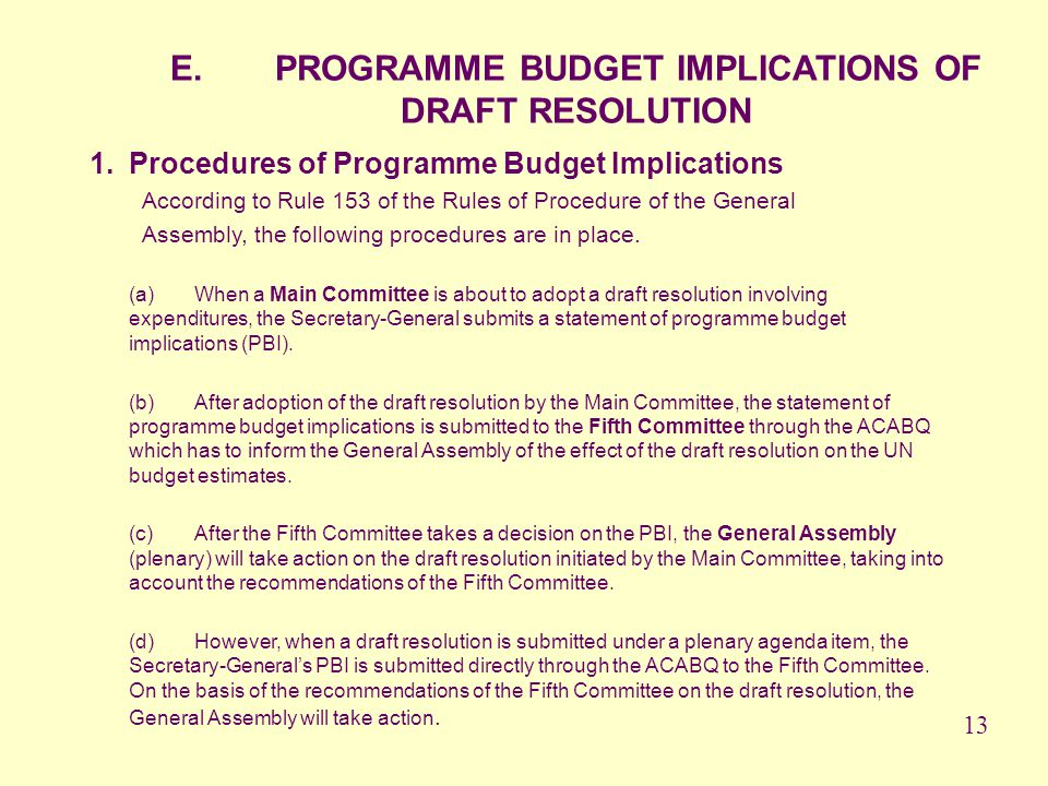 E. PROGRAMME BUDGET IMPLICATIONS OF DRAFT RESOLUTION