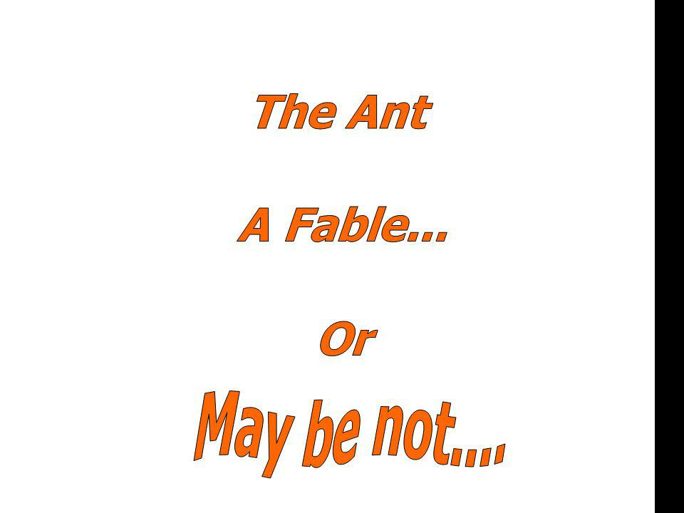 or The Ant A Fable... Or May be not....
