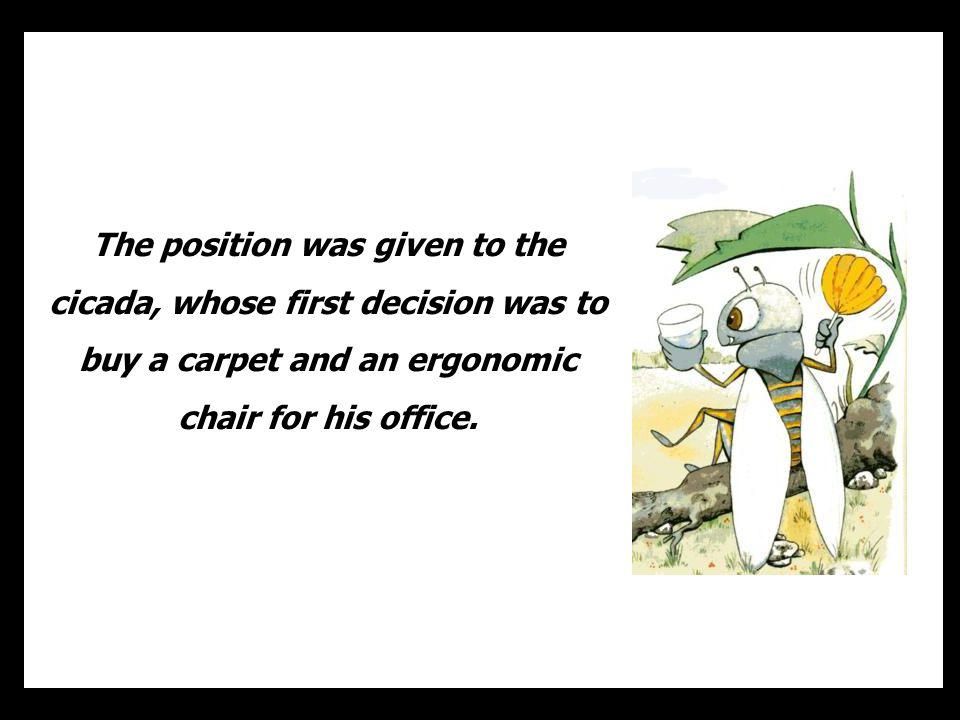 The position was given to the cicada, whose first decision was to buy a carpet and an ergonomic chair for his office.