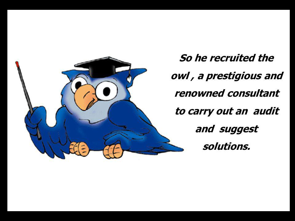 So he recruited the owl , a prestigious and renowned consultant to carry out an audit and suggest solutions.