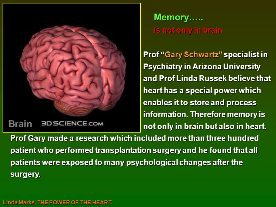 Memory….. Brain is not only in brain