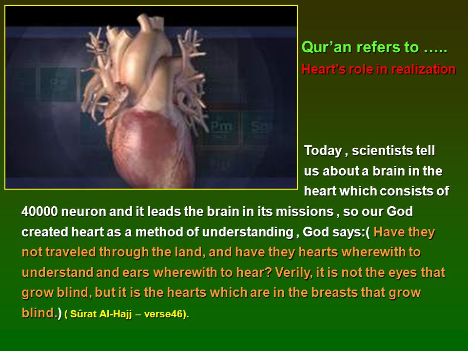 Qur'an refers to ….. Heart's role in realization