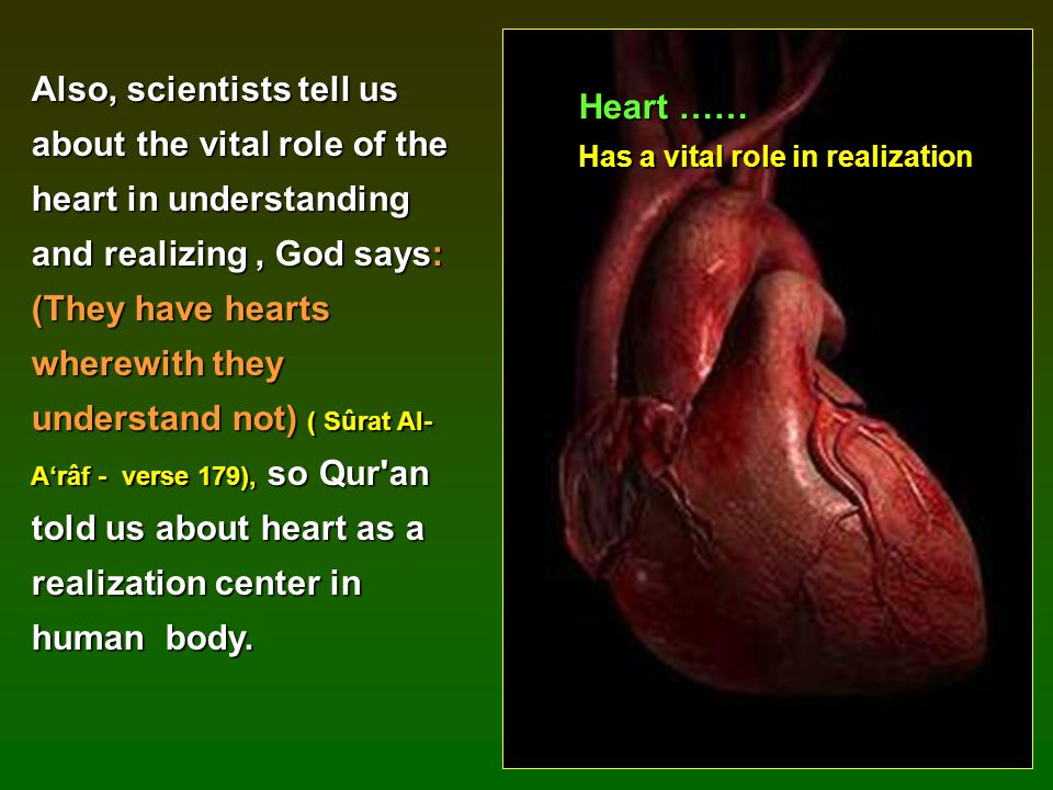 Also, scientists tell us about the vital role of the heart in understanding and realizing , God says: (They have hearts wherewith they understand not) ( Sûrat Al-A'râf - verse 179), so Qur an told us about heart as a realization center in human body.