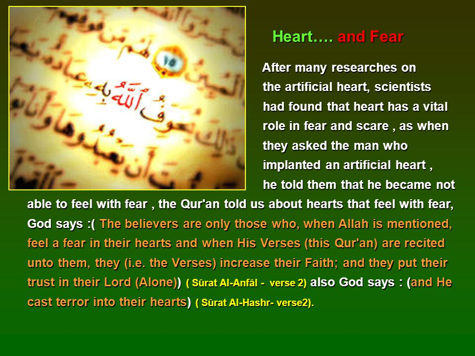 Heart…. and Fear After many researches on
