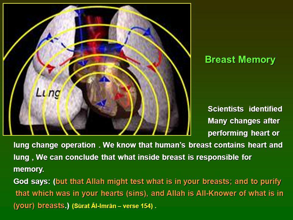 Breast Memory