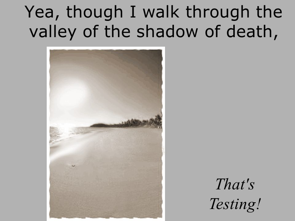 Yea, though I walk through the valley of the shadow of death,