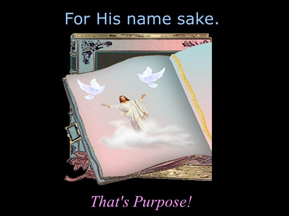 For His name sake. That s Purpose!
