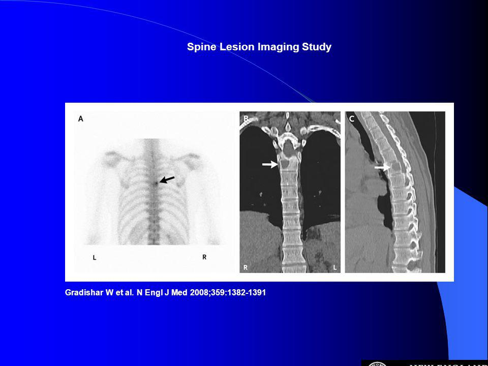 Spine Lesion Imaging Study
