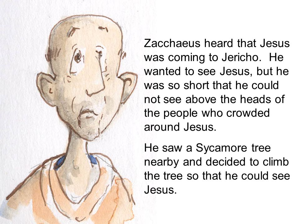 Zacchaeus heard that Jesus was coming to Jericho