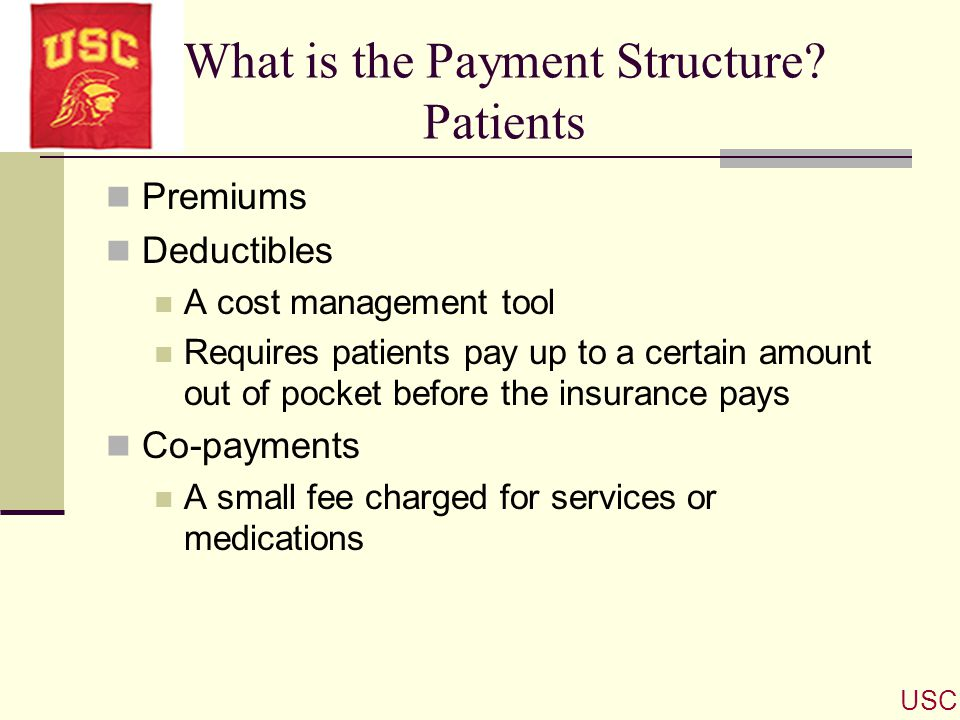 What is the Payment Structure Patients