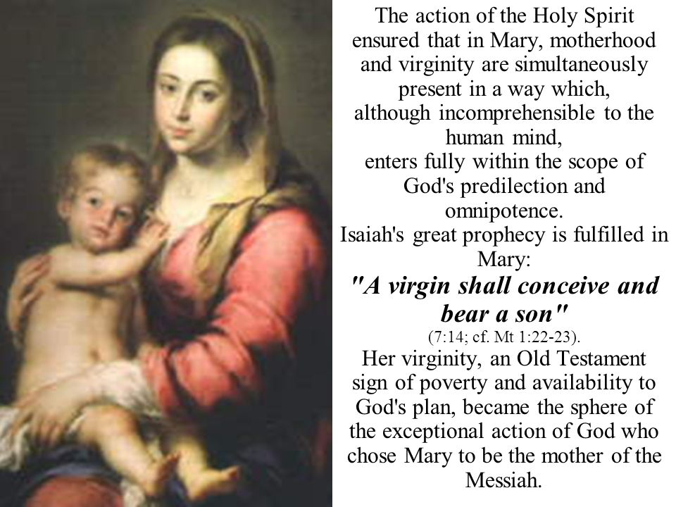 A virgin shall conceive and bear a son