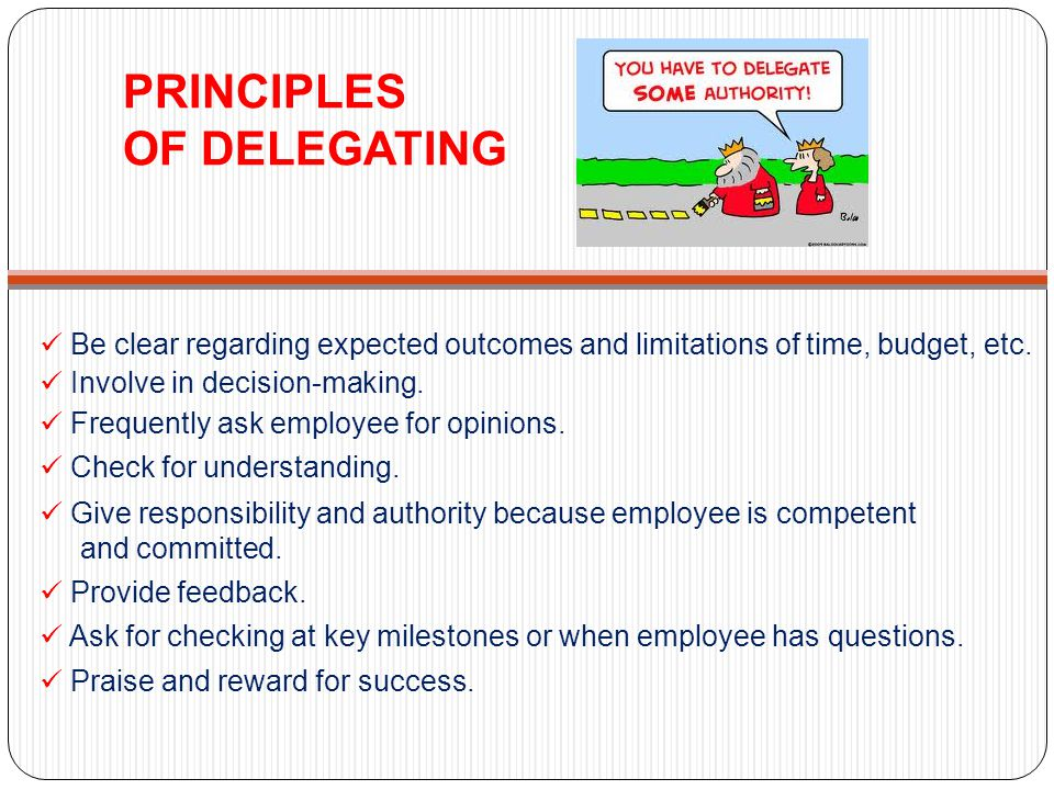 PRINCIPLES OF DELEGATING