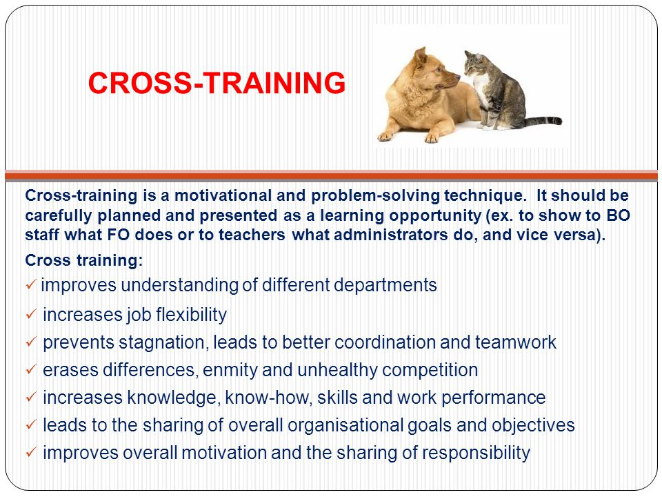 CROSS-TRAINING improves understanding of different departments