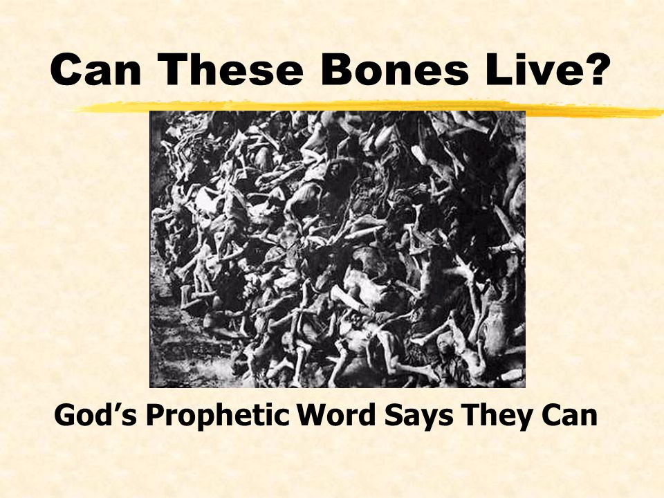 Can These Bones Live God's Prophetic Word Says They Can