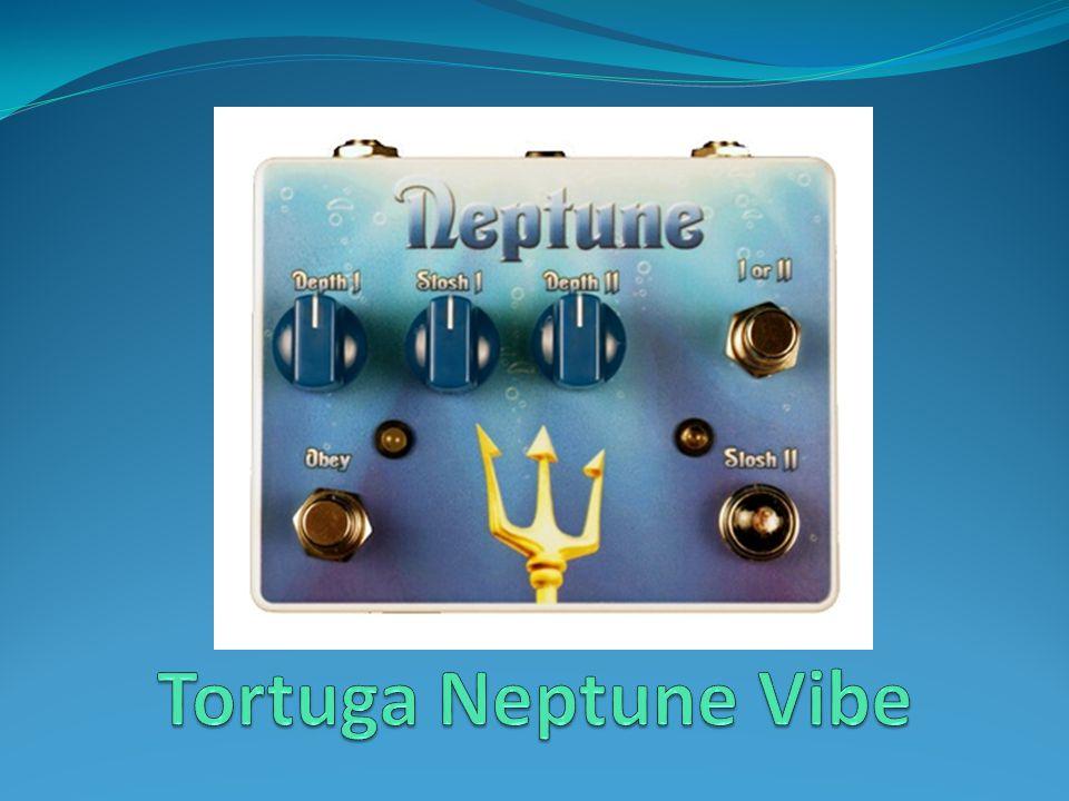 Tortuga Neptune Vibe