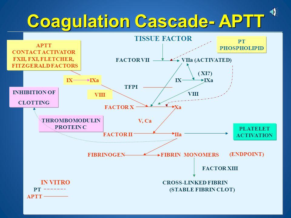 Coagulation Cascade- APTT