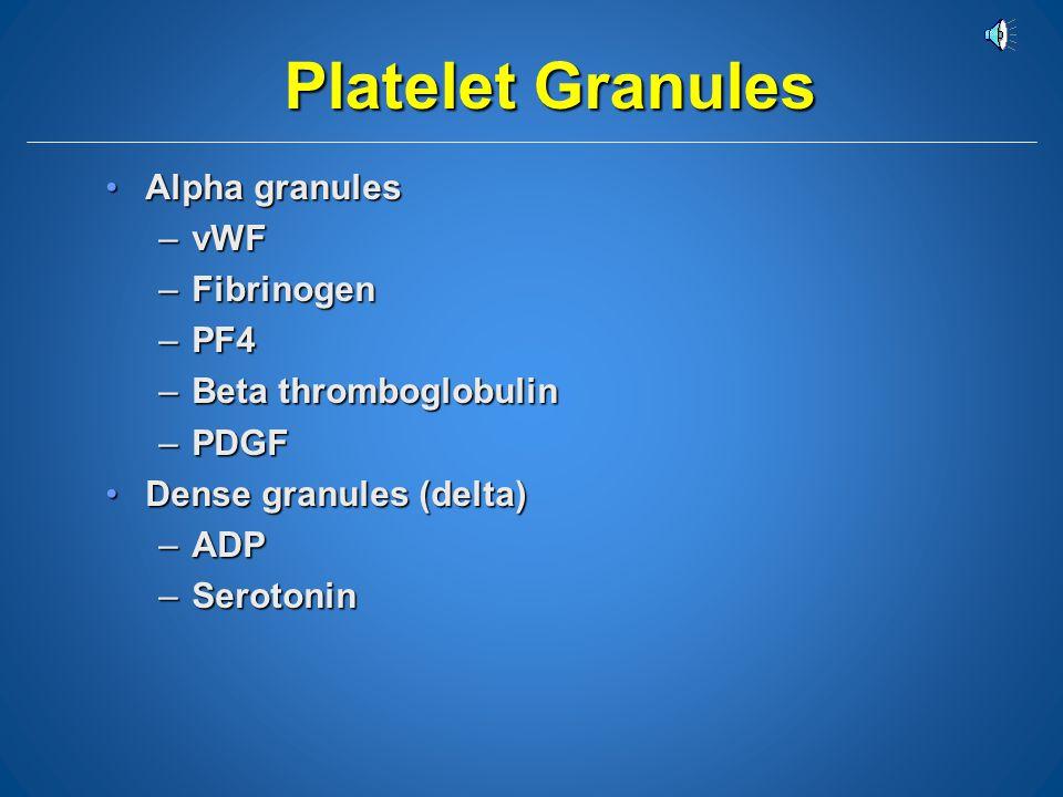 Platelet Granules Alpha granules vWF Fibrinogen PF4