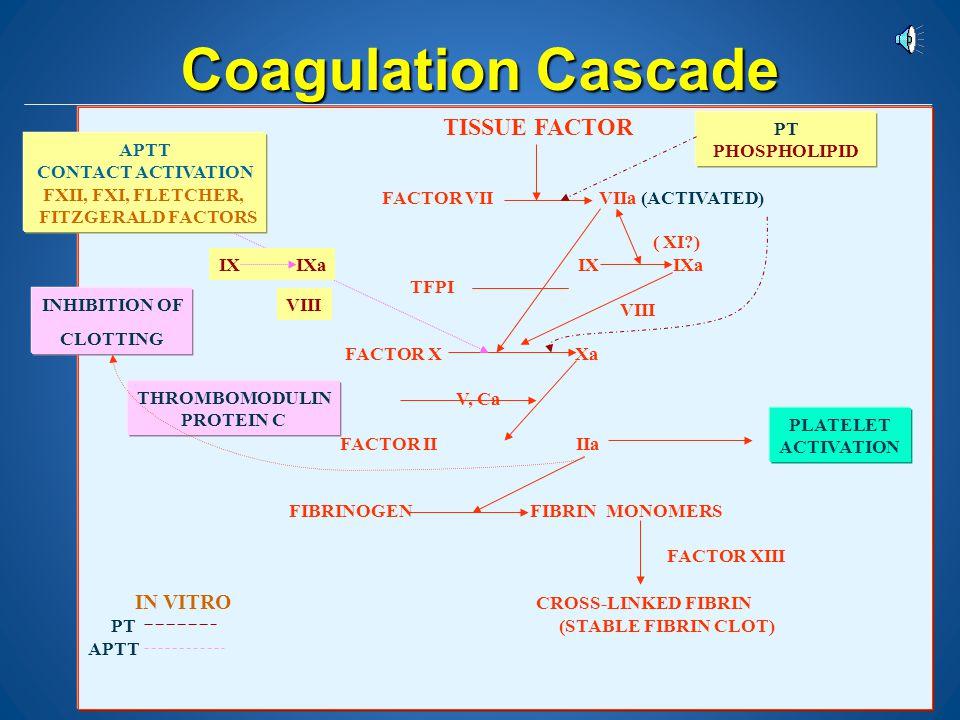Coagulation Cascade TISSUE FACTOR FACTOR VII VIIa (ACTIVATED) ( XI )