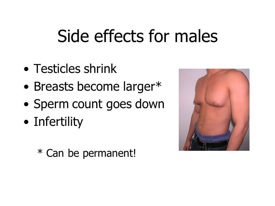 Side effects for males Testicles shrink Breasts become larger*