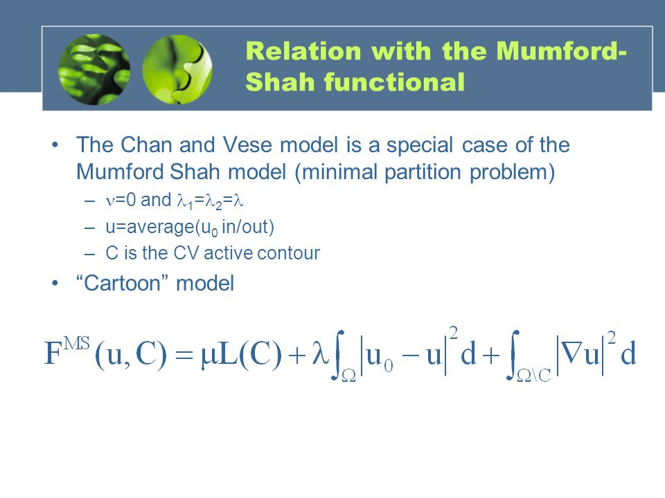 Relation with the Mumford-Shah functional