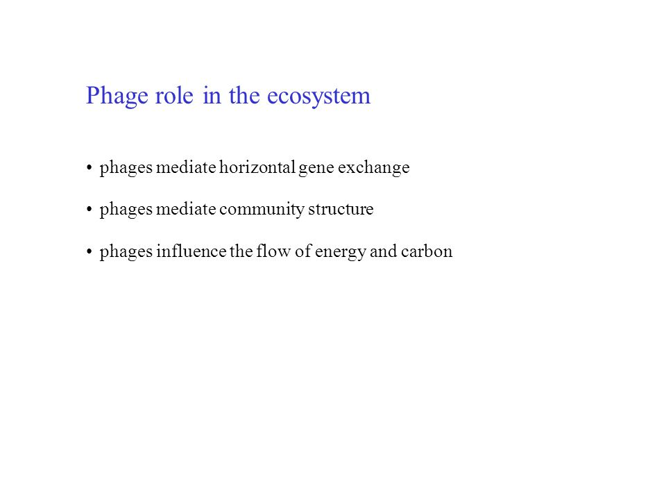Phage role in the ecosystem